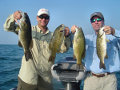 Great Lakes Bass Fishing Guide Service on Lake St. Clair Smallmouth in Michigan.